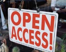 مدیریت و محدود کردن دسترسی اعضا در وردپرس wordpress Access Manager
