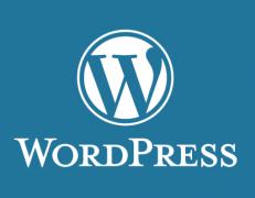 قالب وردپرس فارسی WordPress Veralium