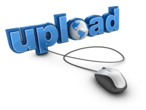 افزودن قابلیت آپلود فایل در فرم تماس وردپرس contact form 7